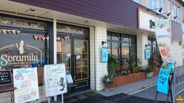 3種類の生地を味わえるプレーンパンケーキと黒猫そら♪CafeSoramilu(カフェそらみる)(奈良/北葛城郡)