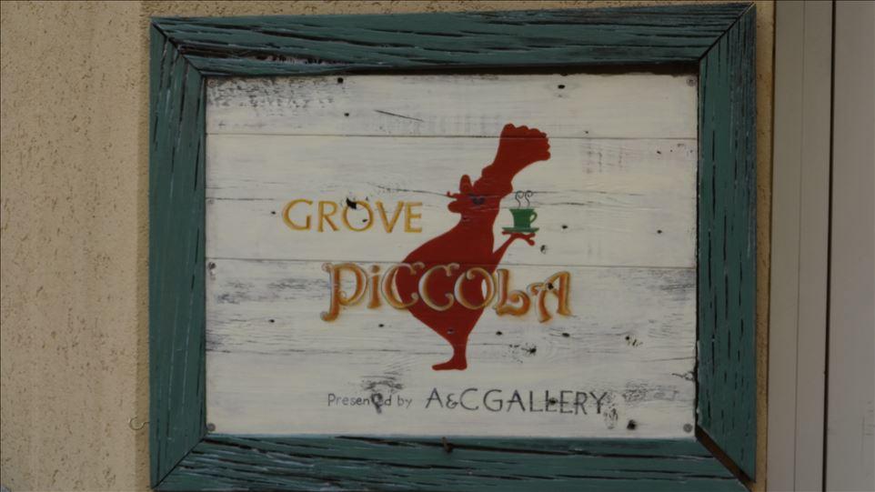 生地目の細かい厚めのプレーン ホットケーキ GROVE PicCCoLA(グローブピッコラ)(大阪/本町)